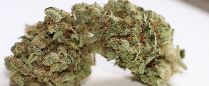 Stardawg Odor and Flavors