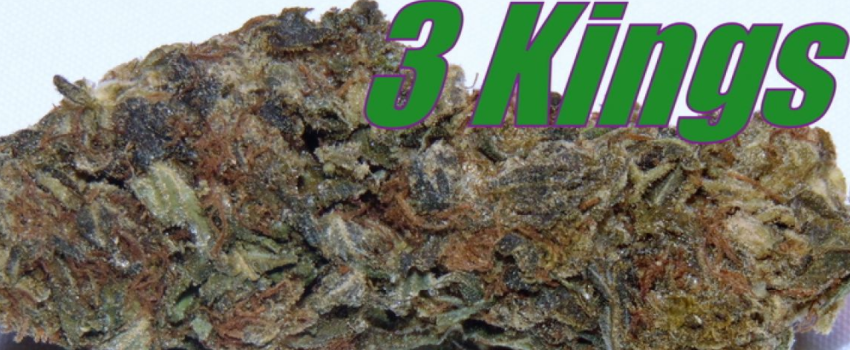 Three Kings Medical Use and Benefits