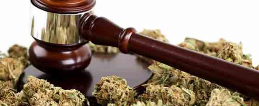 Current Cannabis Law