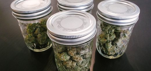 How to Extend the Shelf Life of Marijuana