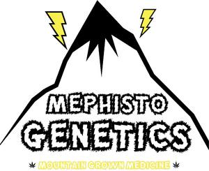 Mephisto_Genetics_1.jpg