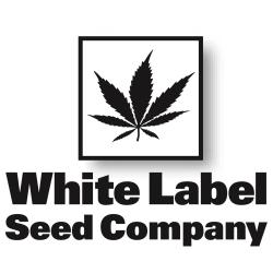 WhiteLabelSeeds.jpg