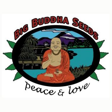 big_buddha_seeds_logo.jpg