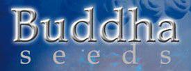 buddha-seed-bank.jpg