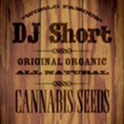 dj-short_177.png